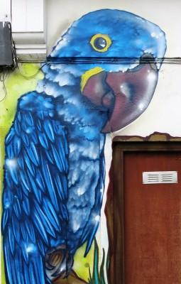 Aero Urban Art 2015