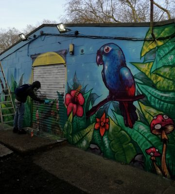 wildlife graffiti mural workshop